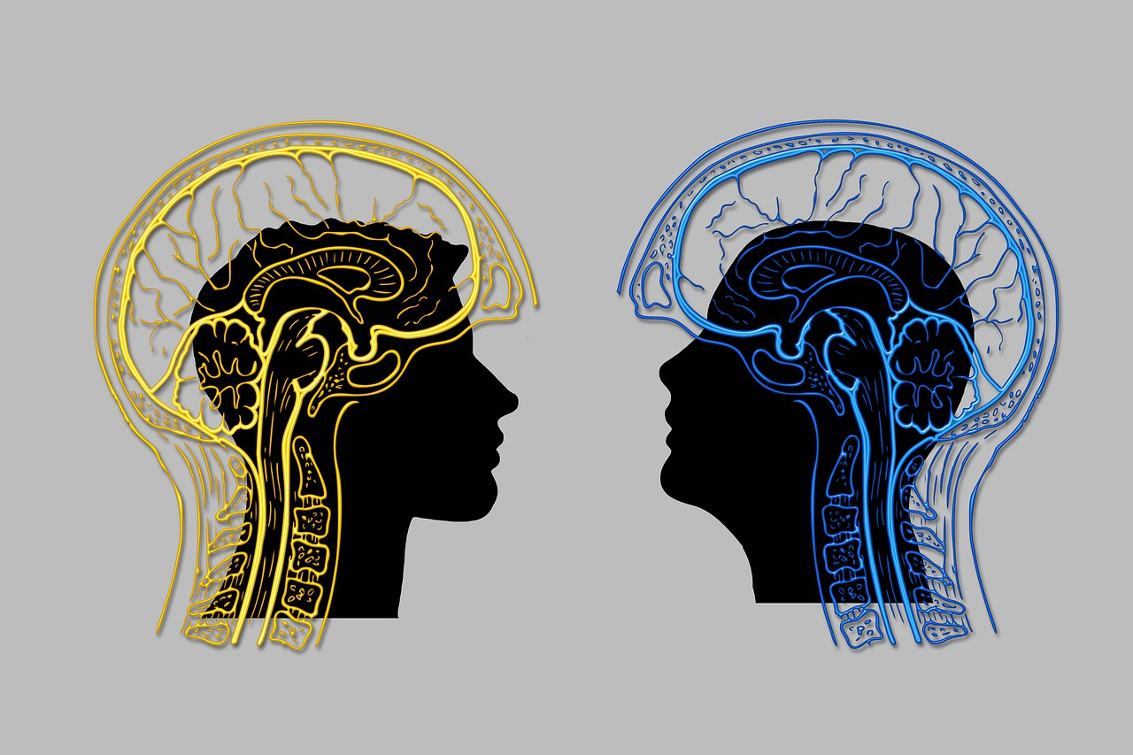 Проверенные способы выбора тренинга личностного роста